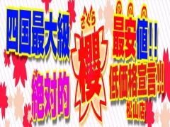 愛媛県松山市 デリヘル 櫻